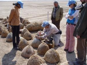 iraq-inspections1